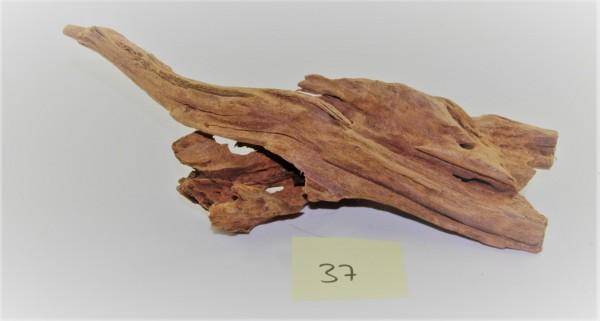 Mangroven Wurzelholz Nr. 37