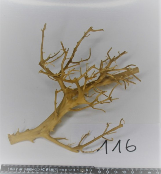 Branch Nano Driftwood 116