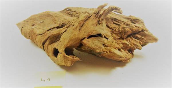 Mangroven Wurzelholz Nr. 41