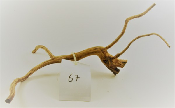 Best NANO Driftwood Nr. 67