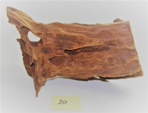 Mangroven Wurzelholz Nr. 20