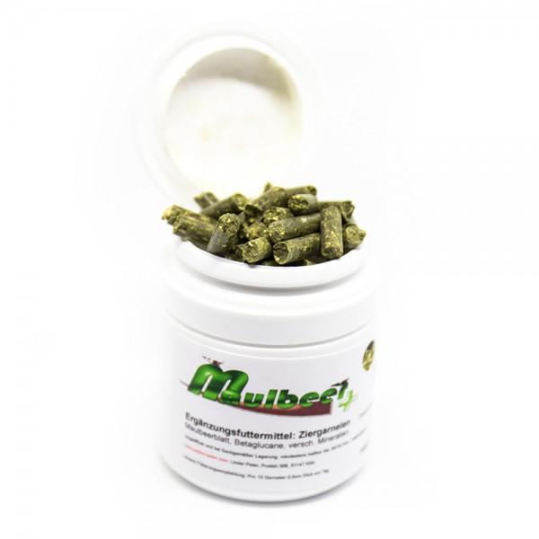 CSF Maulbeer+ 100g
