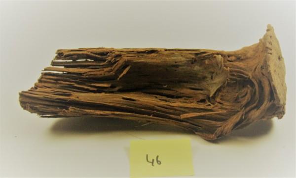 Mangroven Wurzelholz Nr. 46