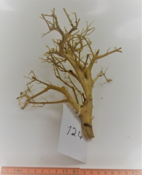 Branch Nano Driftwood Nr. 124