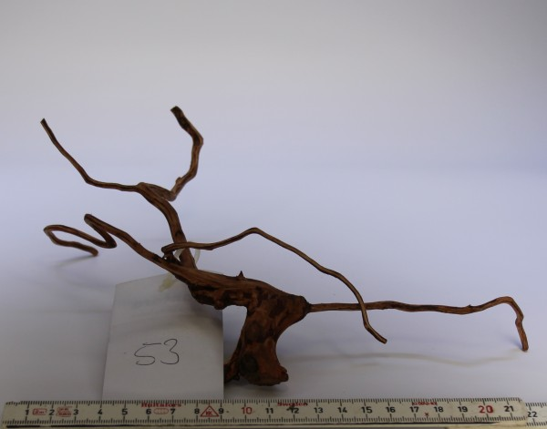 Best NANO Driftwood 53
