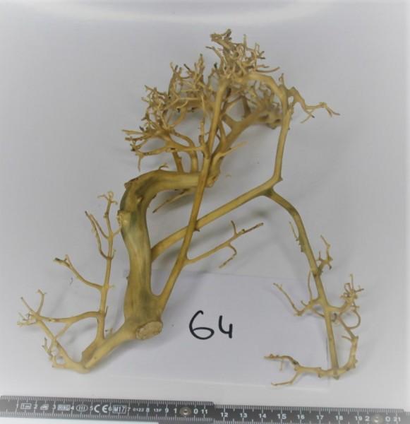 Branch Nano Driftwood 64