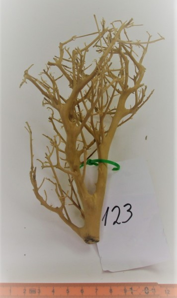 Branch Nano Driftwood Nr. 123