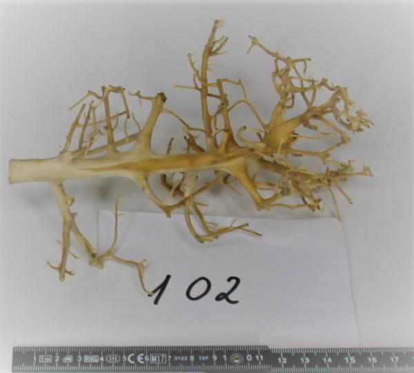 Branch Nano Driftwood 102