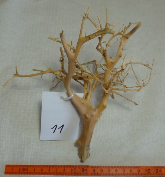Branch Nano Driftwood 11